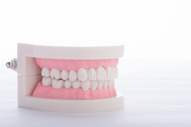 歯科技工所の事業計画書の作成代行