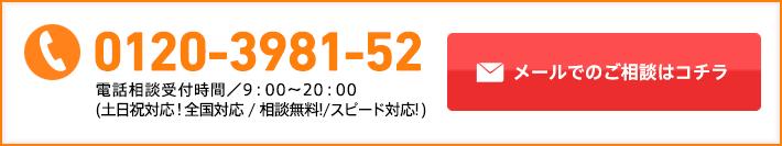 0120-3981-52