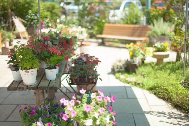 創業融資の花屋の事業計画書作成